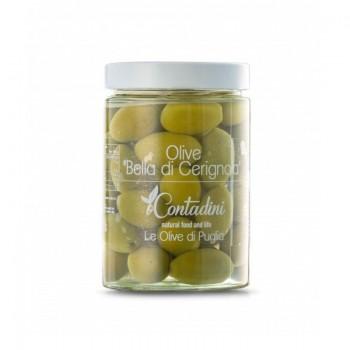 """Olive """"Bella Di Cerignola"""" 550 Gr. Eine sehr große Tafelolive, die ausschließlich von Hand ohne mechanische Mittel geerntet wird, ist knusprig, frisch und ideal zur Anreicherung von Aperitifs."""